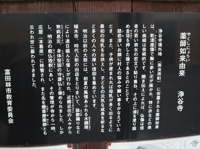 IMG_3767.JPG