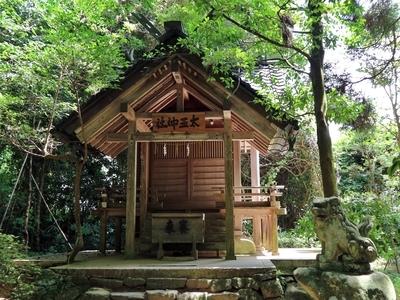 IMG_6198 太玉神社.JPG