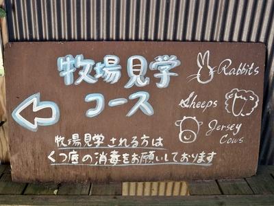 IMG_9805.JPG