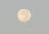 morning moon.JPG
